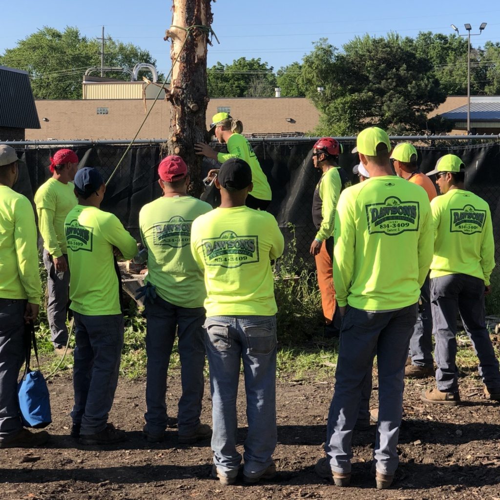 Photo of Safety Training.  Careers at Dawsons Tree Service, Inc. Work with Us!